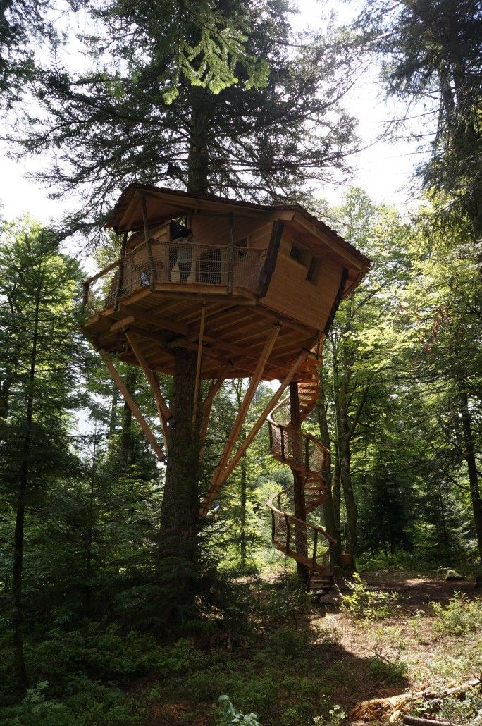 Cabane Méïzou des Puys - Cabane dans les Arbres en Auvergne