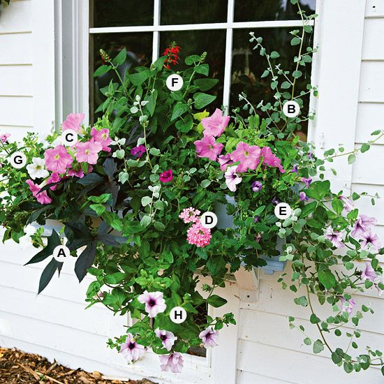 A Gallery of Beautiful Container Garden Ideas If you love planting container