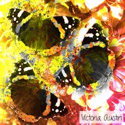 orange yellow butterfly digital art