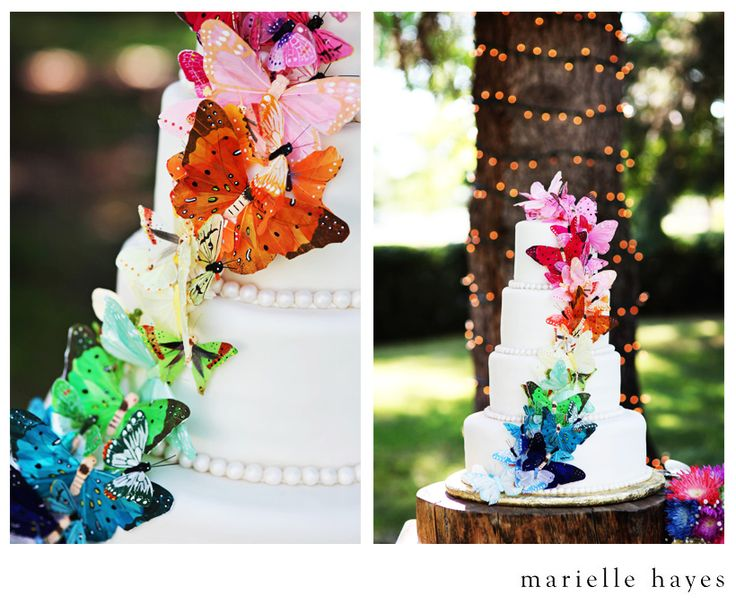 rainbow butterfly wedding cake butterfly rainbow wedding cake wedding inspiration 18957