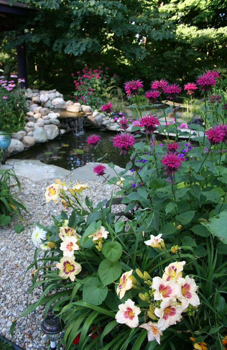 New rock pathway by the Koi pond.   Front yard landscaping ... on Front Yard Pond  id=74262
