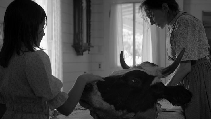 Writer/director Nicolas Pesce discusses his horrifying psychodrama The Eyes of My Mother, which played Fantastic Fest this past weekend.