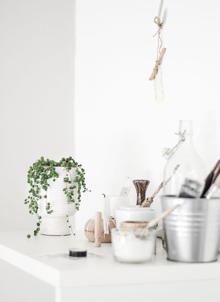 Passion Shake | Urban Jungle Bloggers: One plant – Three stylings | http://passionshake.com