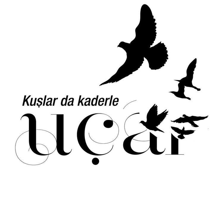 Kuşlar da kaderle uçar. - Cahit Zarifoğlu#sözler #anlamlısözler #güzelsözler #manalısözler #özlüsözler #alıntı #alıntılar #alıntıdır #alıntısözler