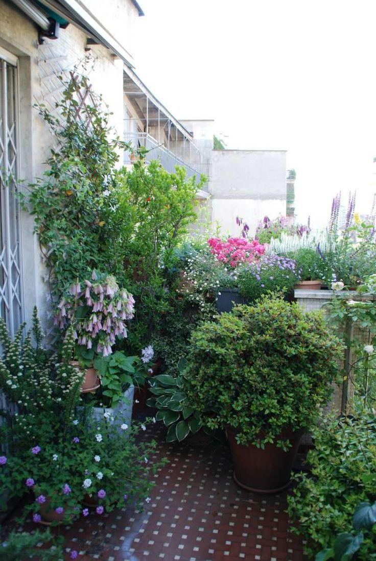 Terrazzi arredati con piante Terrazza arredamento