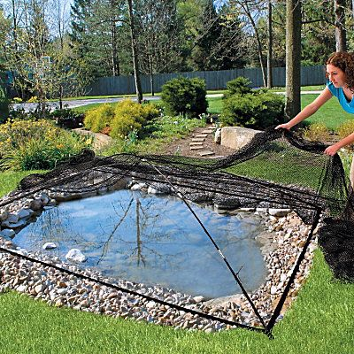 Garden & Pond Covers  $99.99.  For others. I made my own out of PVC and bird net.