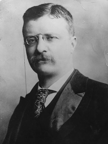 In this 1906 image, President Theodore Roosevelt (1858 - 1919) has noticeable swagger.Roosevelt 19011909, Roosevelt Families, American History, Presidents Theodore, Coolest Presidents, Detached Manners, American Presidential, Defying Convention, 1906 Image