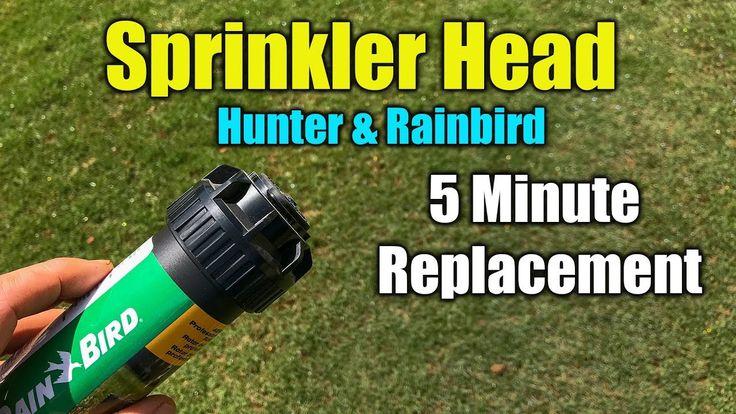 Replace Sprinkler Head RainBird and Hunter Sprinkler