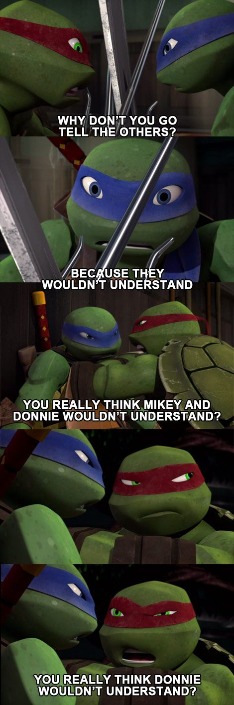 They wouldnt understand tmnt raph leo