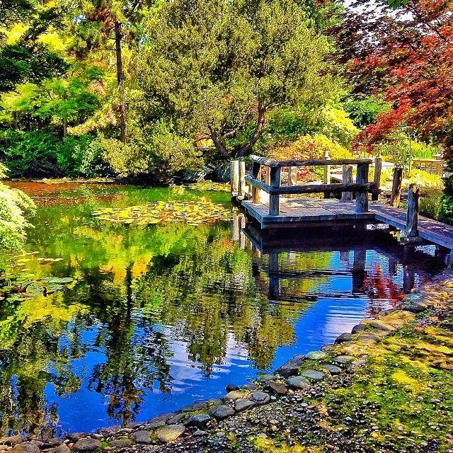 Royal Tasmanian Botanical Gardens, Hobart. #gardens #hobart #tasmania #discovertasmania Image Credit: Rachel Haugh