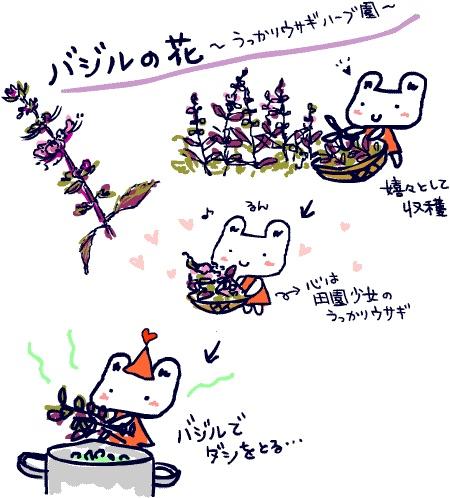 ~自然の休憩所~ Berry's Life うっかり日記 2012年9月7日 ベリー公がバジルを14種類も植えて  今、うっかりウサギのハーブ園はバジルの花が満開!  本当は花を咲かせると葉っぱが硬くなるのですが、  花が咲いたその様もまた素敵で、  そのバジルの束を毎朝、スープ用に摘み取ります。    朝日の当るガーデンはキラキラしてとても綺麗で  嬉々としてバジル畑に入り  両手いっぱいのバジルをかかえて厨房にむかう時  生きてる幸せを感じます。    10代の時から、アリスファームの宇土巻子さんにあこがれ  自給自足を夢見ていた、うっかりウサギにとって  この緑あふれるお店の厨房で仕事できることは  ベリー公のおかげです。    バジルはそのままサラダやオムレツに使うだけでなく、  スープの出汁をとるのに重宝します。  スープもリゾットもぜんぶ、バシルとオレガノをどっさり入れて  朝の厨房はハーブの蒸気でいっぱい!  そのHerbシャワーを毎日浴びるうっかりウサギは  貧乏だけど幸せです。   http://berryslife.com