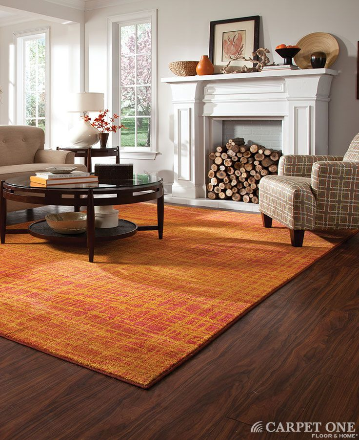 13 best floor area rugs images on pinterest rugs area for Rugs for dark floors