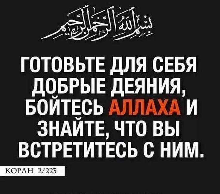 картинки все мы от аллаха этими позитивными