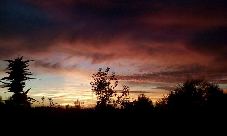 Nebe 3