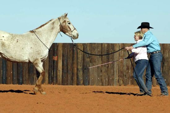 Clinton Anderson: Back Up Your Horse
