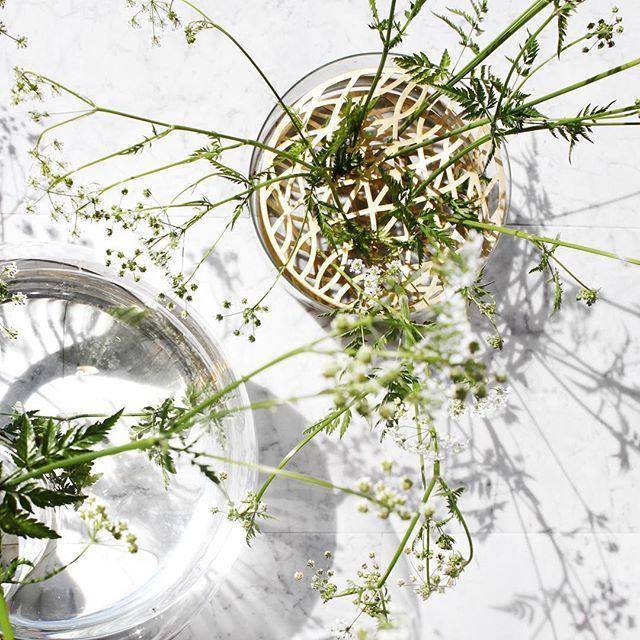 Klong Äng Vase