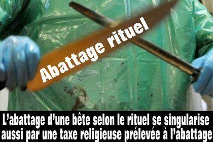 abattage-rituel1