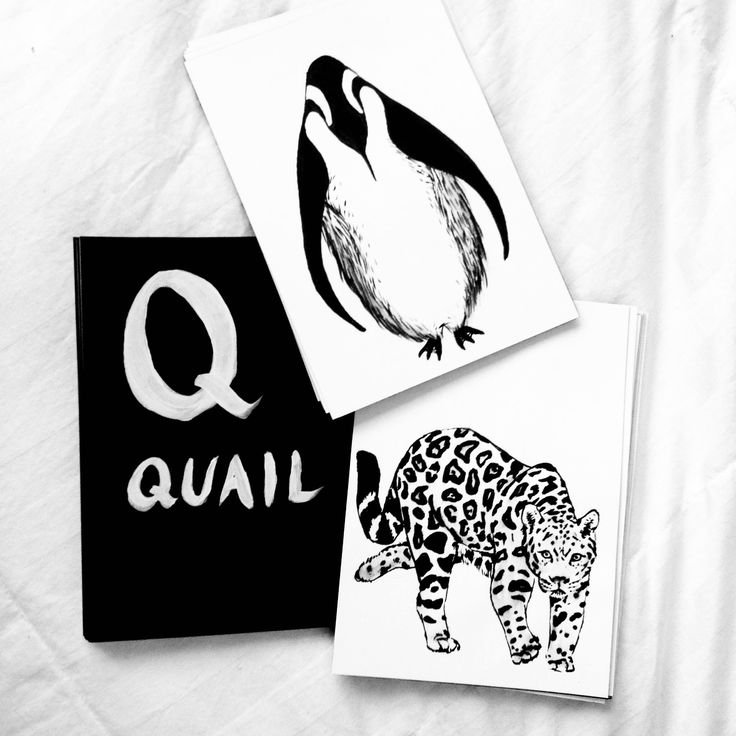 Animal A-Z FlashcardsAnimal A-Z Flashcards by Ashley Opperman / art print / ink illustrations