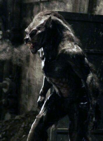 Underworld Lycans Costume 444 best Bad Moon Risi...