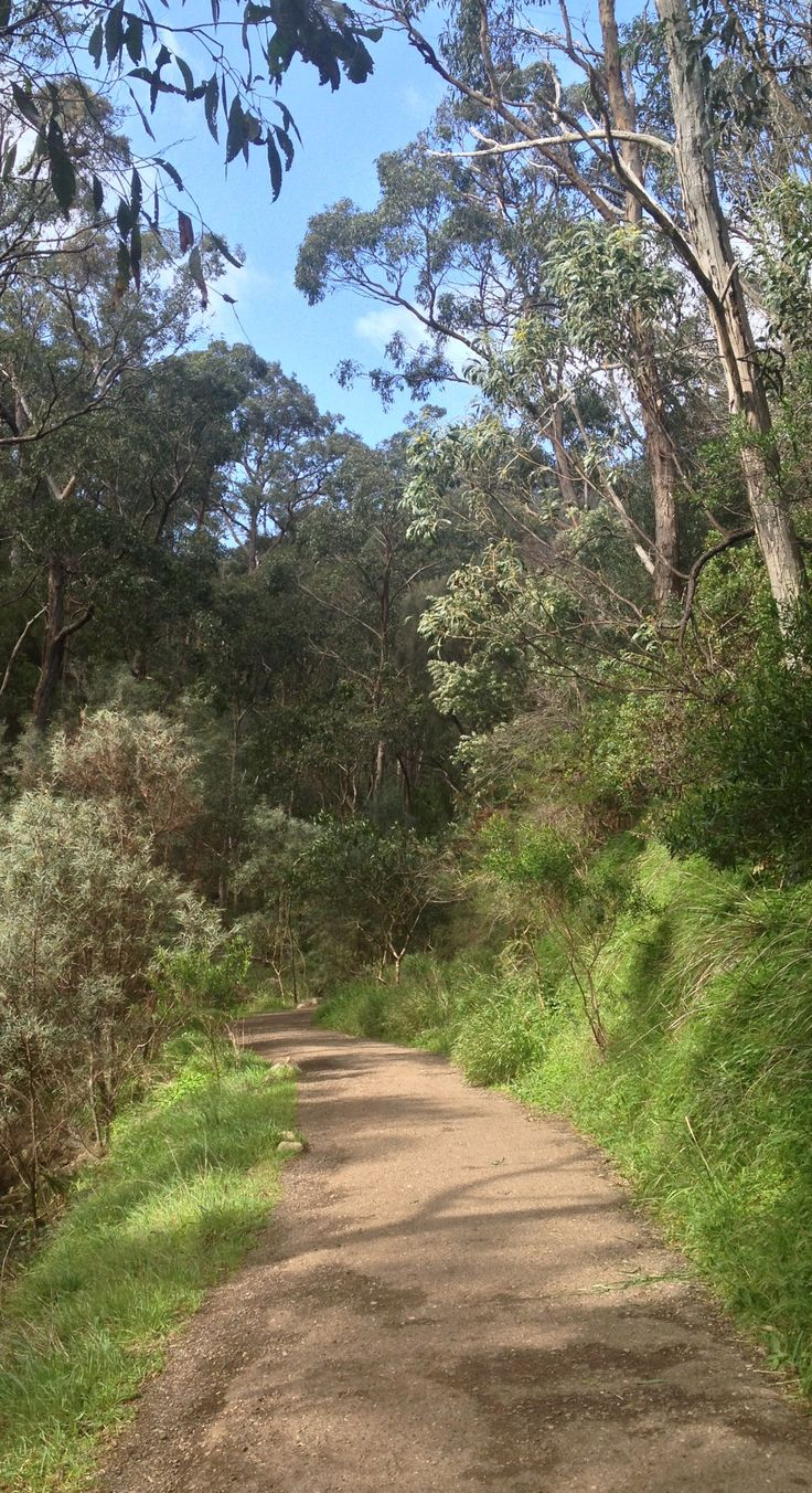 Mount Lofty walk by riawati