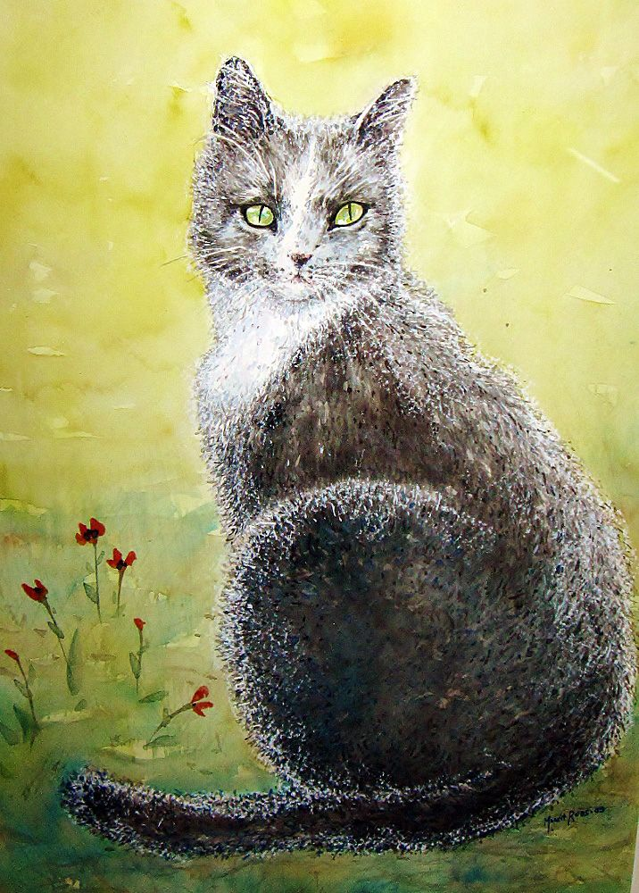 My cat-Akvarelli