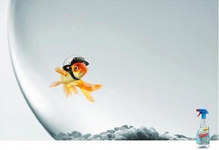 Glass Cleaner Goldfish Ad