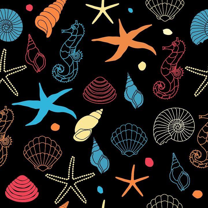 해 마, 불가사리, 조개, 셸, 바다 포탄, 아트, 벽지, 종이, 배경, 그림, 패턴, 디자인