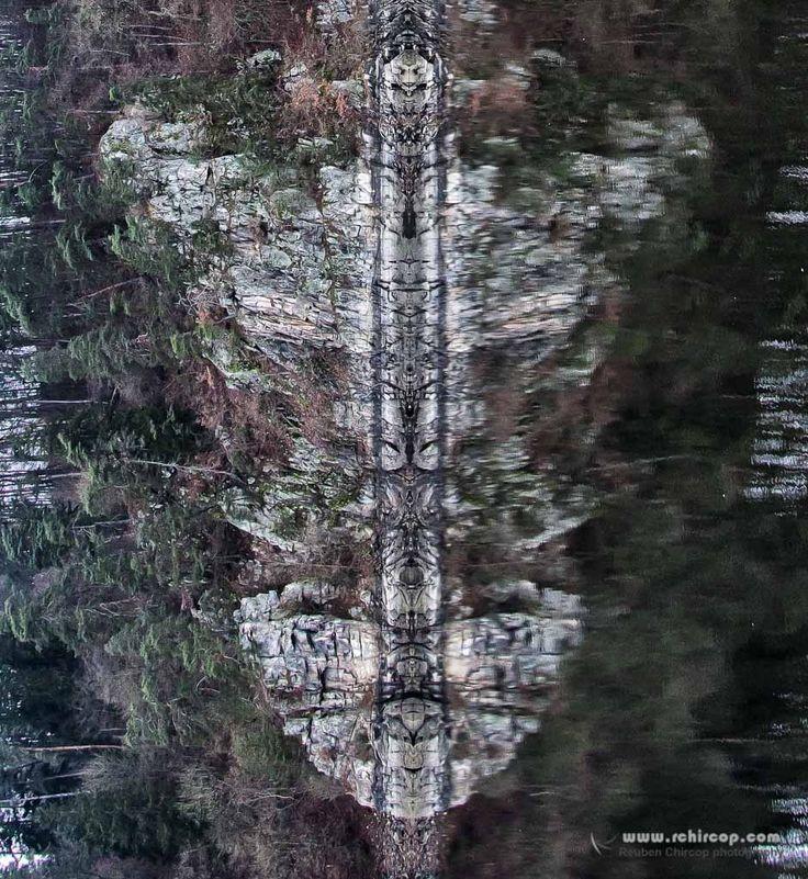 Tiger Face.jpg by Reuben Chircop on 500px