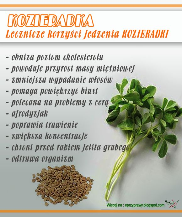 Przyprawy - Blog o przyprawach, ziołach, zdrowym odżywianiu i gotowaniu : Kozieradka - ''zioło dla kulturystów'' , na włosy,...
