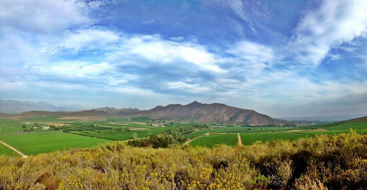 View from FishEagle hiking trail at #vanloveren #biodiversity  #DiscoverRobertson