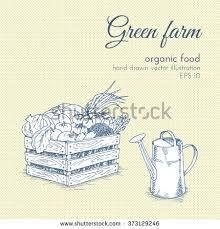 food basket illustration] - Google Search