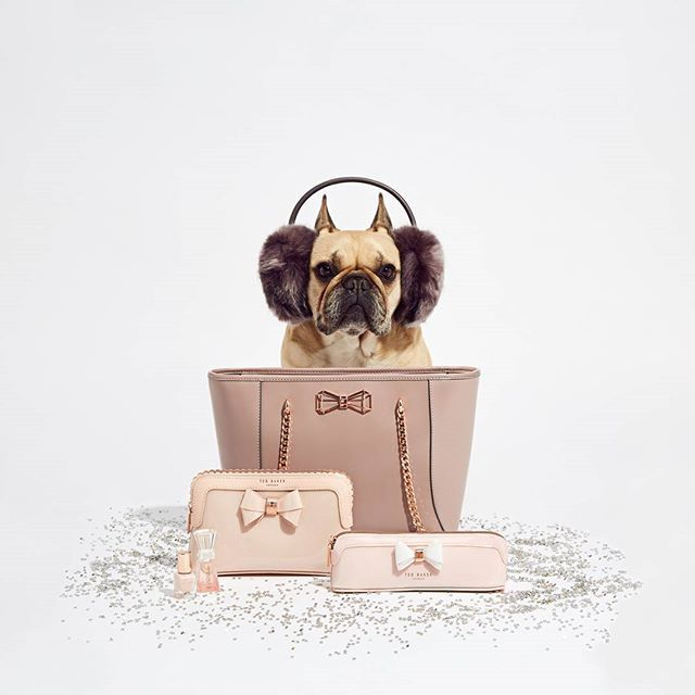 12 Days of Pearlmas - Caught her making those puppy-dog eyes at you? Ted's Little Helper knows just the sort of treat she's chasing. A handbag is a girl's best friend, and the JALIE bag will be up for more than just walks in the park. To complete the look, surprise her with MINIATURE BEAUTY ESSENTIALS and FLUFFY EAR MUFFS to keep the cold at bay. If that isn't enough to get her teeth into, ensure she walks on air while at home with Ted's plush COTTON DOG PRINT SLIPPERS.