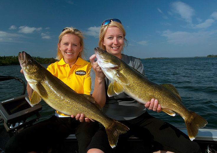 Al Lindners Top Tips for Fishing Northwest Ontario: How to Catch Big Bass, Walleye, Muskie and So Much More - Northern Ontario, Canada