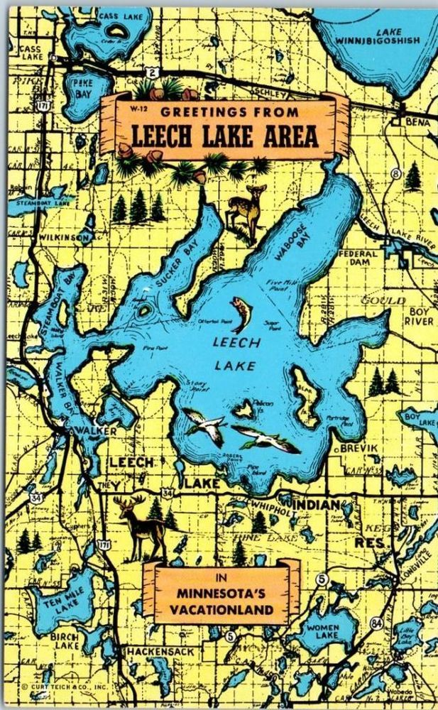 57 best leech lake fishing images on pinterest fishing peach leech lake minnesota postcard greetings from leech lake area w map c1960s sciox Image collections