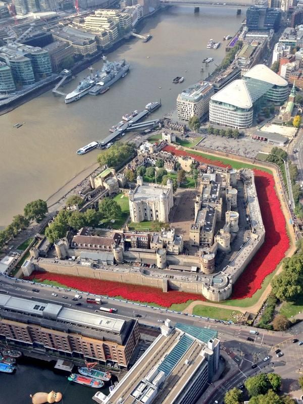 Poppy Update. Tower of London. | Photo credit MPS Helicopters via Twitter @MPSinthesky