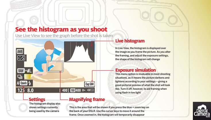 Using the camera s histogram as you shoot free photography cheat sheet