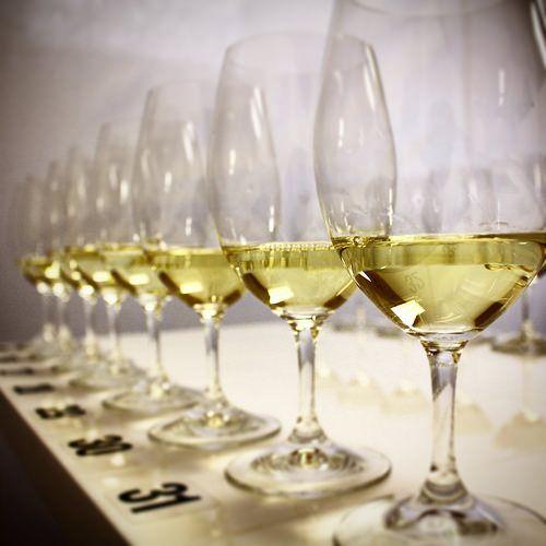 2014 Barossa Wine Show Judging | copyright Barossa Grape & Wine Association
