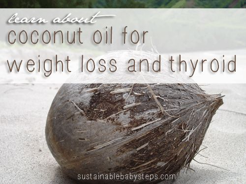 Learn about how coconut oil for weight loss and thyroid issues might benefit you and how to begin incorporating it into your healthy lifestyle. - Sustainable Baby Steps