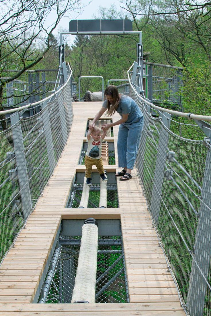 Baumwipfelpfad Harz und Luchsfütterung in Bad Harzburg | Das perfekte Ausflugsziel für die ganze Familie Goslar Burgberg Wandern mit Kindern Baby Affenzahn Harzer Wandernadel