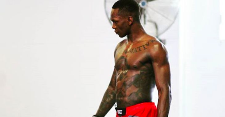 Israel Adesanya Says He and Robert Whittaker Are Two Dogs Looking at Each Other https://cstu.io/804818 #CutePuppy #CutePuppies #Puppy #Dogs #CuteDogs