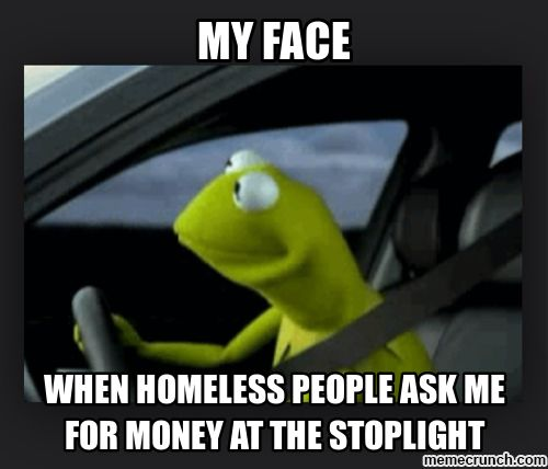 Best None Of My Business Images On Pinterest Jokes Business - Real life kermit the frog discovered in costa rica