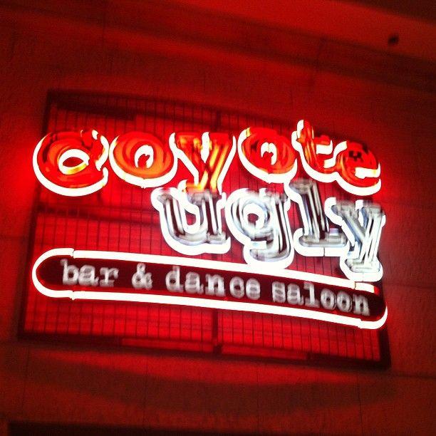 Coyote Ugly Saloon - Las Vegas