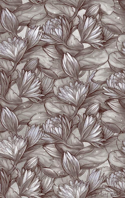 najlepších obrázkov na nástenke egyptian blue lotus na e, Beautiful flower