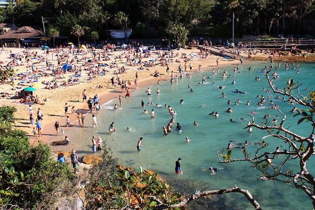 Shelley Beach - Sydney