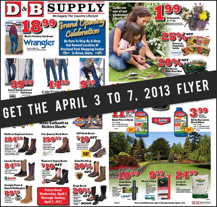 D&b coupons