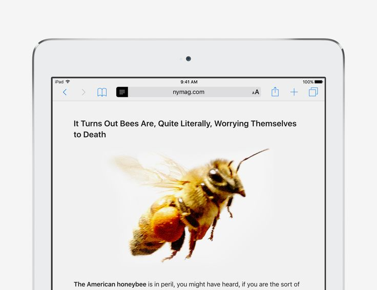 Remove webpage clutter - iOS 9 Tips and Tricks for iPad - Apple Support