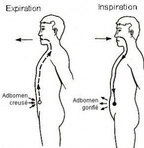 La Respiration Abdominale