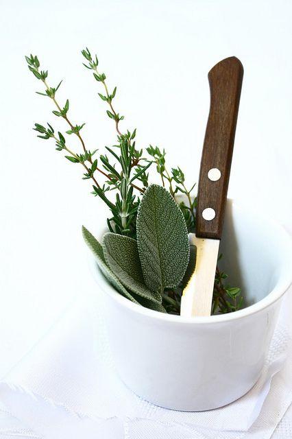 fresh herbs...