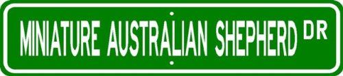 Miniature Australian Shepherd STREET SIGN  High Quality Aluminum  Dog Lover * More info could be found at the image url.