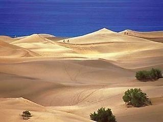 Fuerteventura - it's where I always go to recharge my batteries. Need to get back there soon